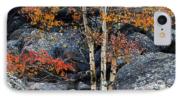 Among Boulders IPhone Case by Chad Dutson
