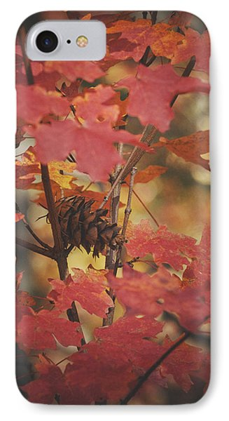 Amongst The Maple Leaves  IPhone Case by Saija  Lehtonen