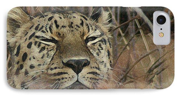 Amur Leopard 1 IPhone Case by Ernie Echols