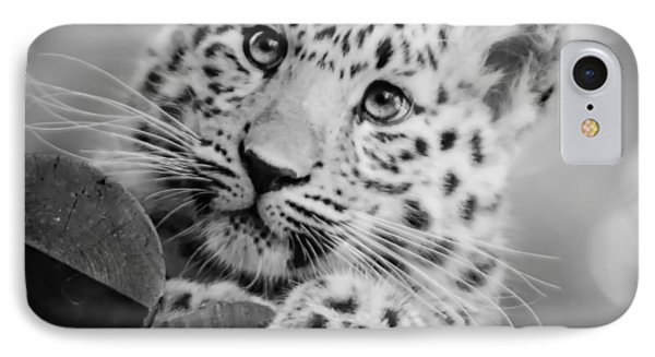 Amur Leopard Cub Portrait IPhone Case by Chris Boulton