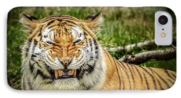 Amur Tiger Smile Phone Case by LeeAnn McLaneGoetz McLaneGoetzStudioLLCcom