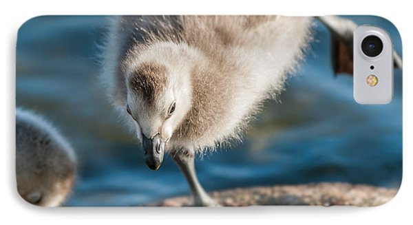 An Acrobatic Goose Phone Case by Janne Mankinen