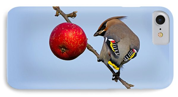 An Apple A Day... IPhone Case by Torbjorn Swenelius