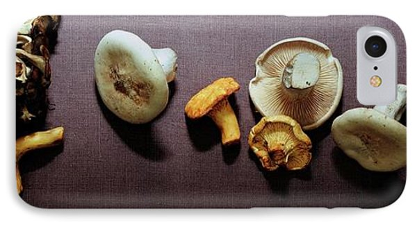 An Assortment Of Mushrooms IPhone Case by Romulo Yanes