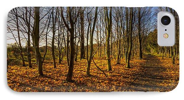 An Autumn Walk IPhone Case by Ross G Strachan