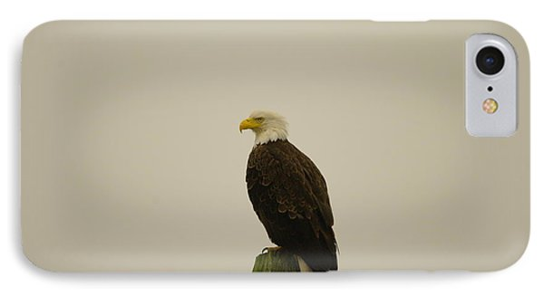 An Eagle Perched Phone Case by Jeff Swan