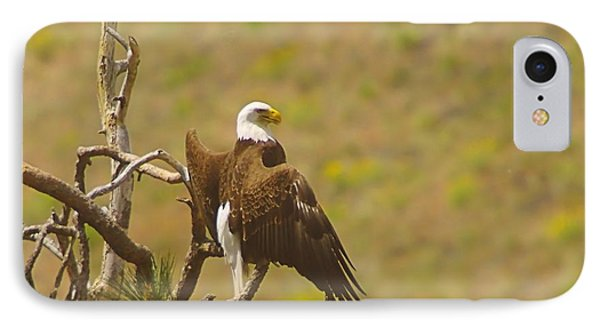 An Eagle Stretching Its Wings Phone Case by Jeff Swan