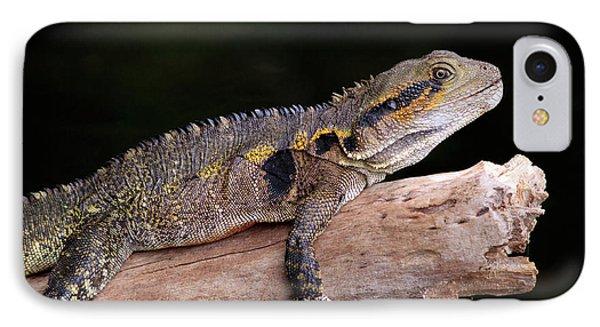 Far North Queensland iPhone 7 Case - An Eastern Water Dragon (eastern Water by Paul Dymond
