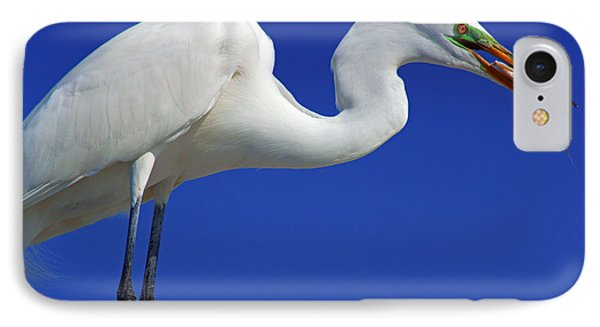 An Egret's Lunch IPhone Case