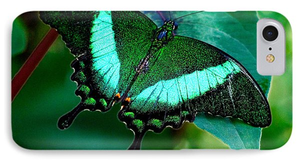 An Emerald Beauty IPhone Case by Karen Stephenson