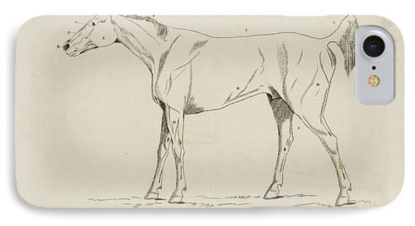 An Illustration Of A Horse IPhone Case