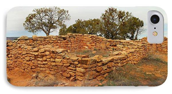 Anasazi Ruins Southern Utah Phone Case by Jeff Swan