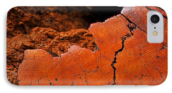 IPhone Case featuring the photograph Ancient Log by Crystal Hoeveler
