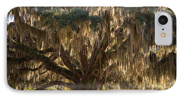 Ancient Oak 1 IPhone Case