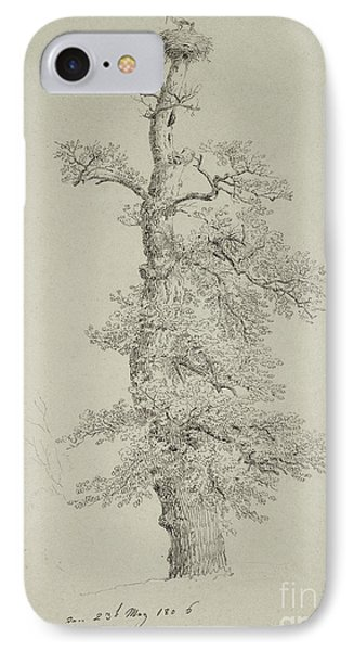 Ancient Oak Tree With A Storks Nest IPhone Case