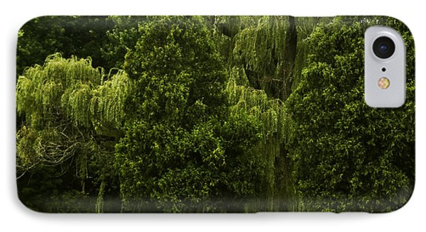IPhone Case featuring the photograph Ancient Willow by Kathleen Stephens
