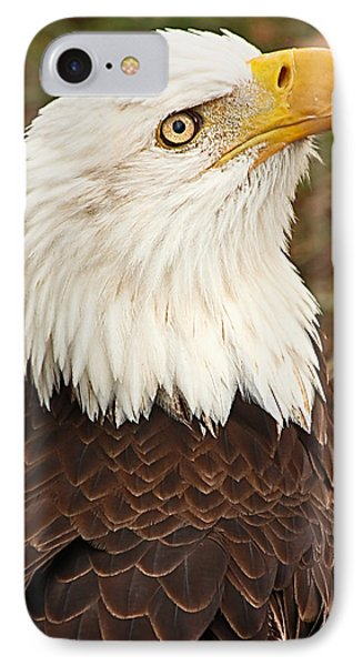 IPhone Case featuring the photograph And The Home Of The Brave... by Tammy Schneider