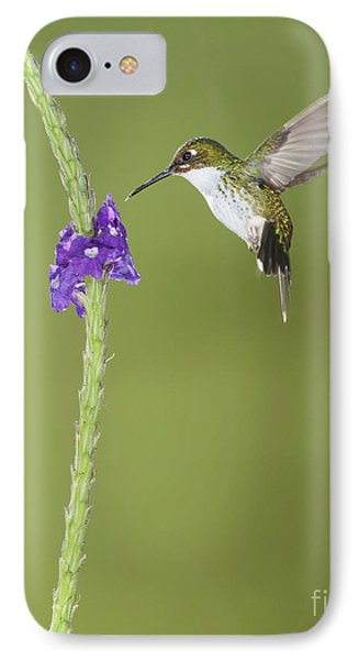 Andean Emerald Hummingbird IPhone Case