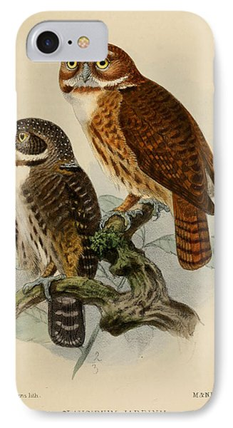 Andean Pygmy Owl IPhone Case