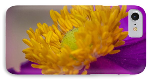 IPhone Case featuring the photograph Anemone by Cathy Donohoue