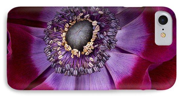 Anemone Coronaria  Macro Phone Case by Ann Garrett