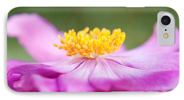 Anemone Flower Close Up Phone Case by Natalie Kinnear