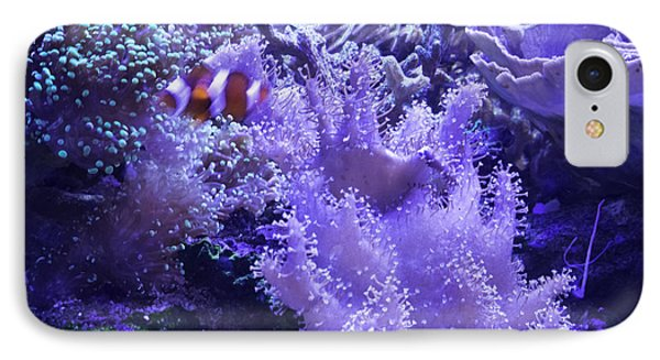 Anemone Starlight IPhone Case by Susan Molnar