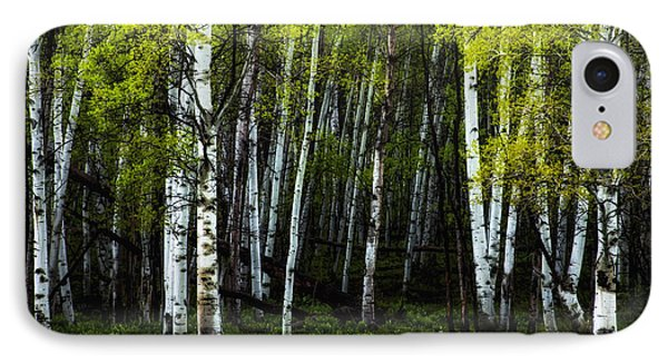 Anew IPhone Case by The Forests Edge Photography - Diane Sandoval