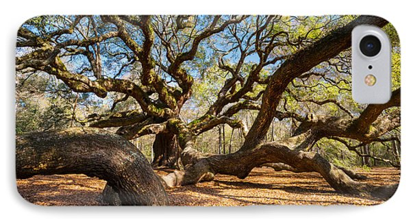 Angel Oak Tree Charleston Sc Phone Case by Dave Allen