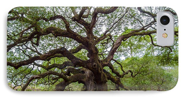 Angel Oak Tree IPhone Case by Dale Powell