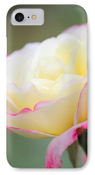 Angel Of Roses IPhone Case by The Art Of Marilyn Ridoutt-Greene