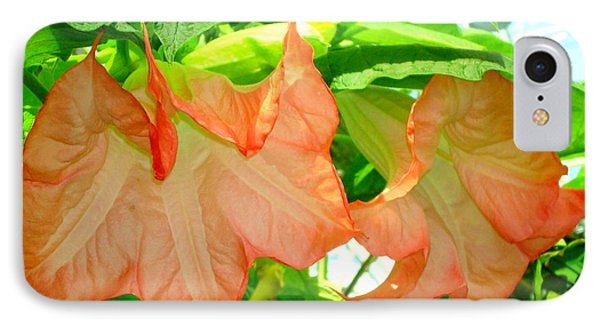 IPhone Case featuring the photograph Angel Trumpet  by Kay Gilley