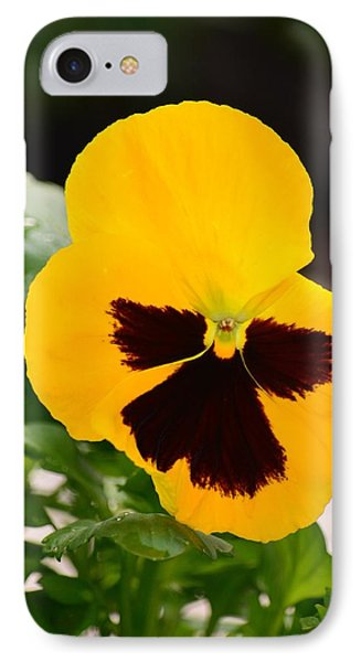 Angel Winged Pansy Phone Case by Maria Urso