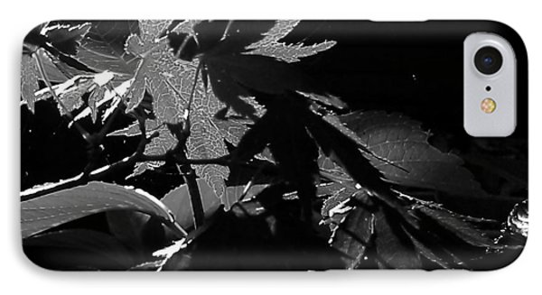 Angels Or Dragons B/w IPhone Case by Martin Howard