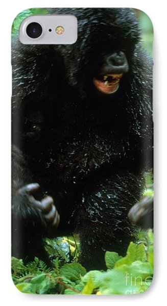 Angry Mountain Gorilla IPhone 7 Case by Art Wolfe