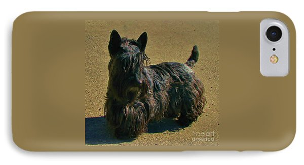 IPhone Case featuring the photograph Angus by Michele Penner