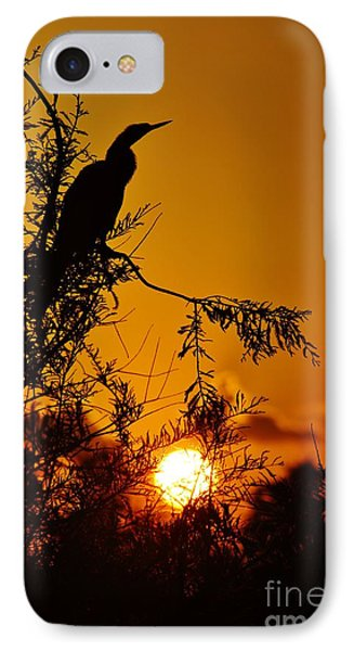 Anhinga Sunset IPhone Case by Lynda Dawson-Youngclaus