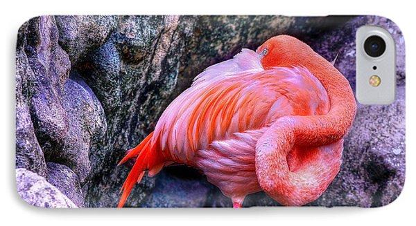 Animal 1 IPhone Case