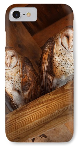Animal - Bird - A Couple Of Barn Owls IPhone Case by Mike Savad