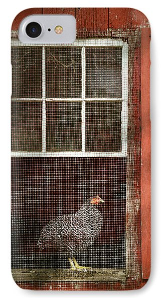 Animal - Bird - Chicken In A Window Phone Case by Mike Savad