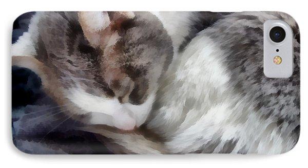 animals - cats - Cat Nap IPhone Case