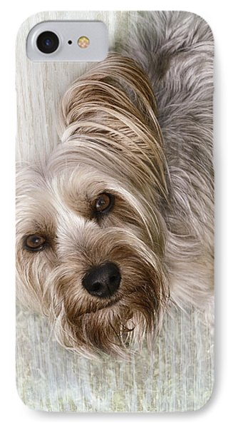 animals - dogs - Rascal Phone Case by Ann Powell