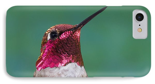 Annas Hummingbird Phone Case by Anthony Mercieca