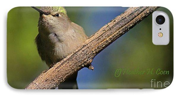 Anna's Hummingbird Baby Phone Case by Heather Coen