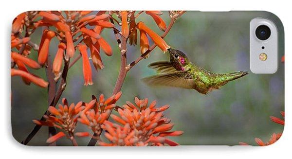 Anna's Hummingbird IPhone Case by Linda Villers