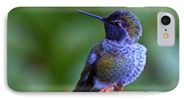 Annas Hummingbird IPhone Case by Randy Hall