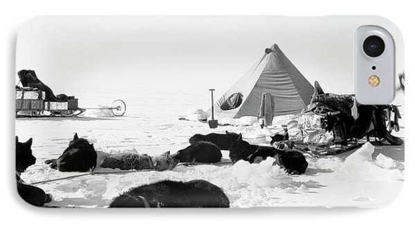 Antarctic Sled Dogs IPhone Case by Scott Polar Research Institute