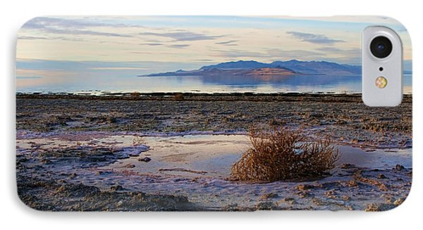 IPhone Case featuring the photograph Antelope Island - Tumble Weed by Ely Arsha