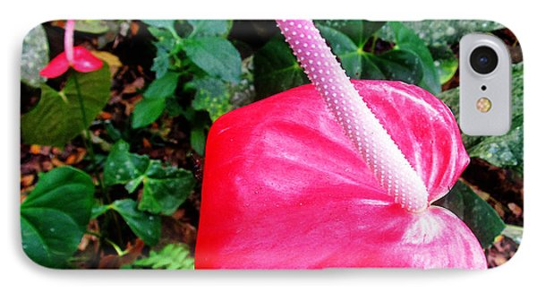 Anthurium Flower Two Phone Case by Tina M Wenger