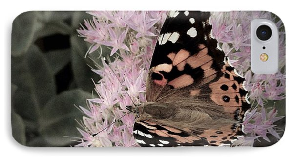 Antique Monarch IPhone Case by Photographic Arts And Design Studio